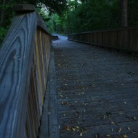 Walking trails